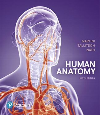 Cover of Human Anatomy, a textbook authored by Robert Tallitsch